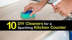 Homemade Kitchen Counter Cleaner titleimg1