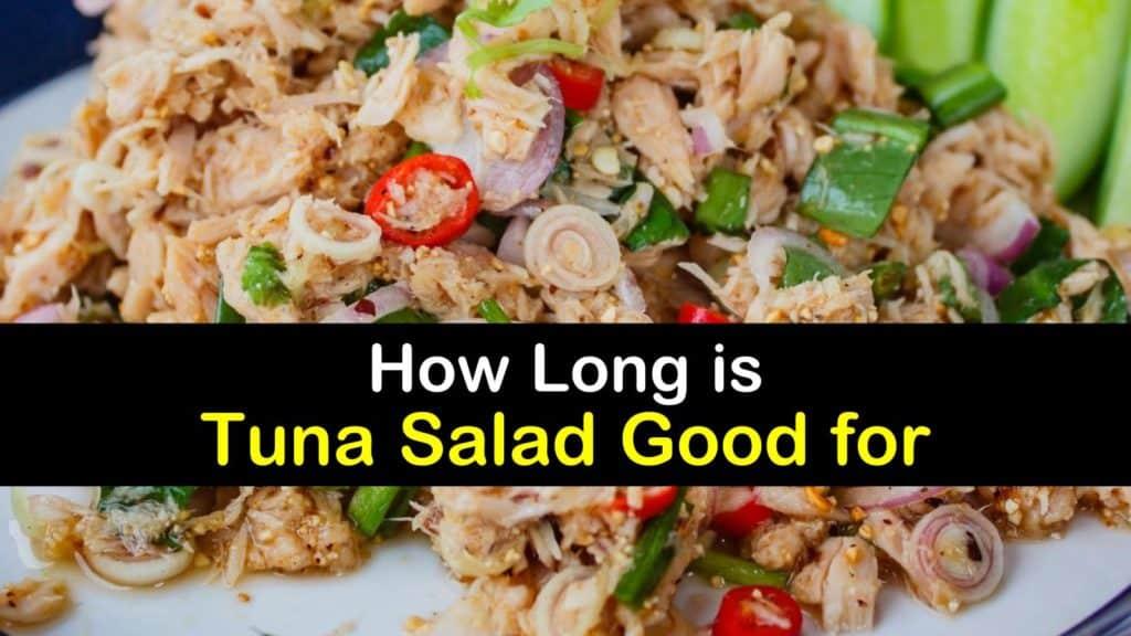 How Long is Tuna Salad Good for titleimg1