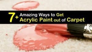 How to Get Acrylic Paint out of Carpet titleimg1