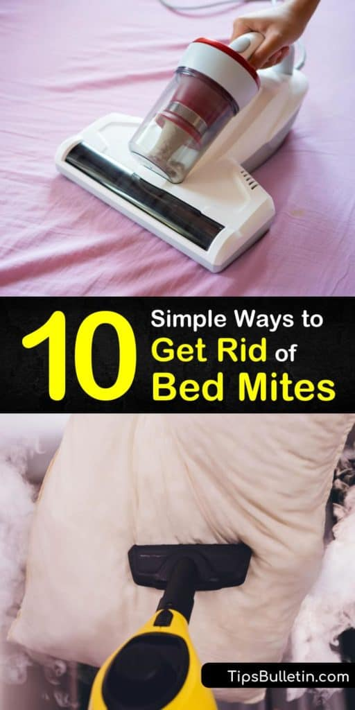Discover some of the simplest strategies that kill dust mites and bed bugs. It's as easy as vacuuming your carpeting, buying washable pillow cases, spraying essential oils, and using a dehumidifier with a HEPA filter to get rid of bed mites for good. #getridof #bed #mites