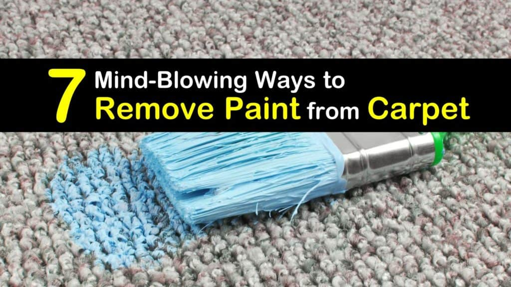 How to Remove Paint from Carpet titleimg1
