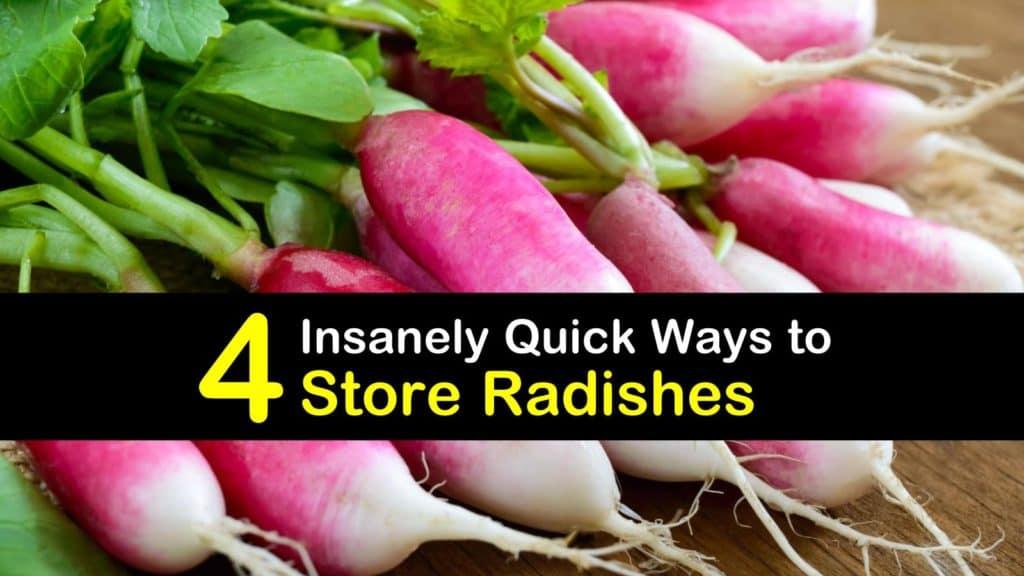 How to Store Radish titleimg1