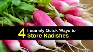 How to Store Radish titleimg1
