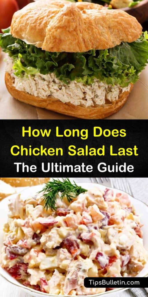 Learn how long chicken salad lasts and ways to store it, homemade or from the deli. Proper food storage is vital for food safety and refrigeration is safer than room temperature. It's also easy to freeze chicken salad to lengthen its shelf life. #chicken #salad #last #howlong