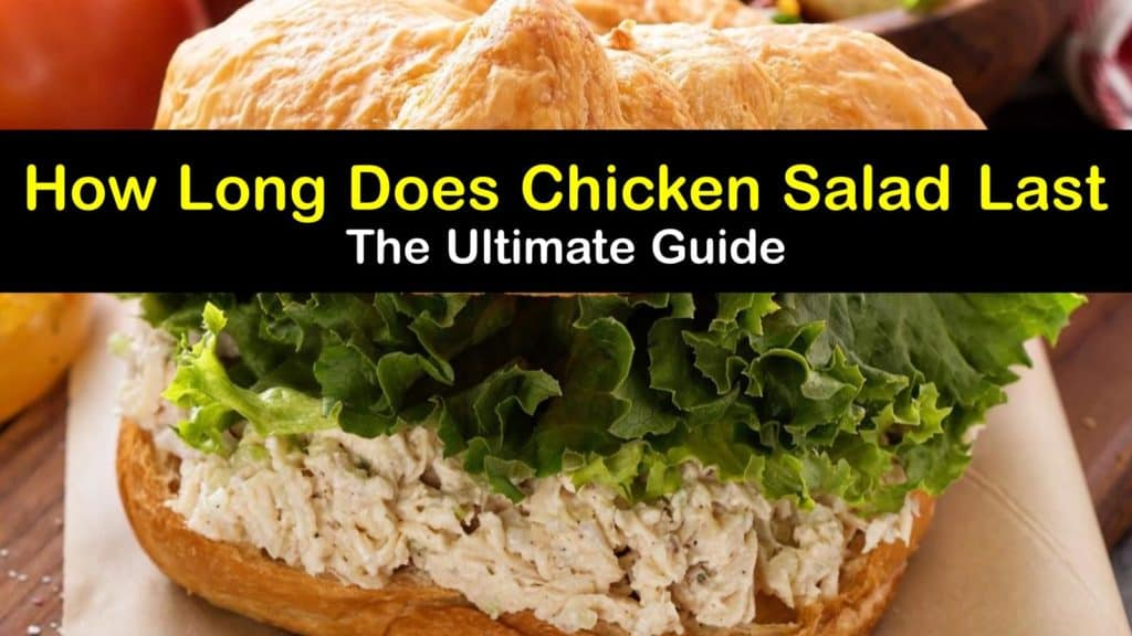 How Long does Chicken Salad Last titleimg1