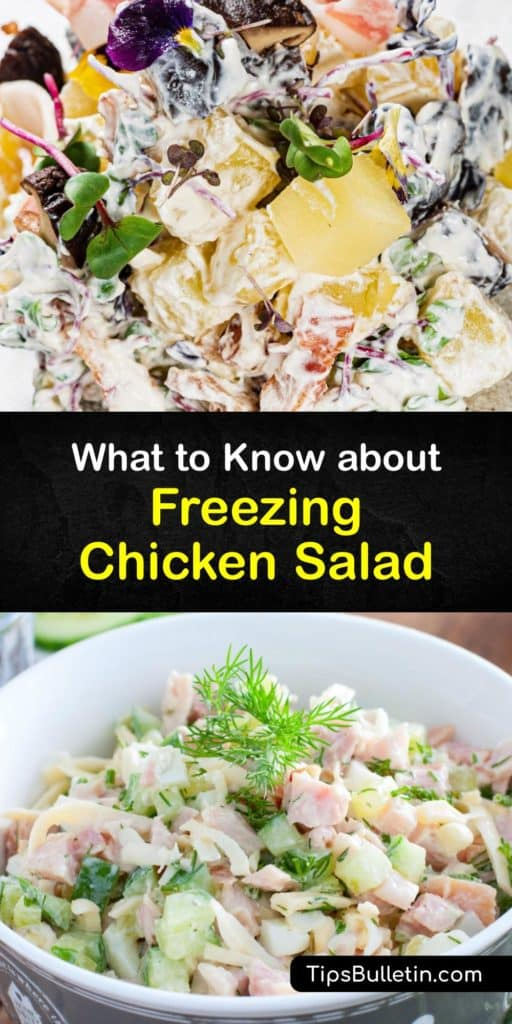 Make a delicious chicken salad recipe with cooked chicken and salad dressing and learn how to preserve and defrost frozen chicken salad at room temperature. Smart steps like removing excess liquid and excess air are simple food safety tips that keep your favorite foods fresh. #freeze #chicken #salad