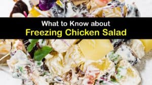 Can You Freeze Chicken Salad titleimg1