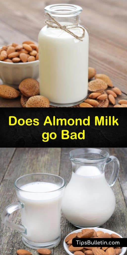 Learn when almond milk goes bad and ways to store it. Unlike dairy milk, almond milk has a varying shelf life depending on whether it's shelf-stable almond milk or homemade almond milk, but the signs of spoilage are relatively the same. #almond #milk #bad #spoil