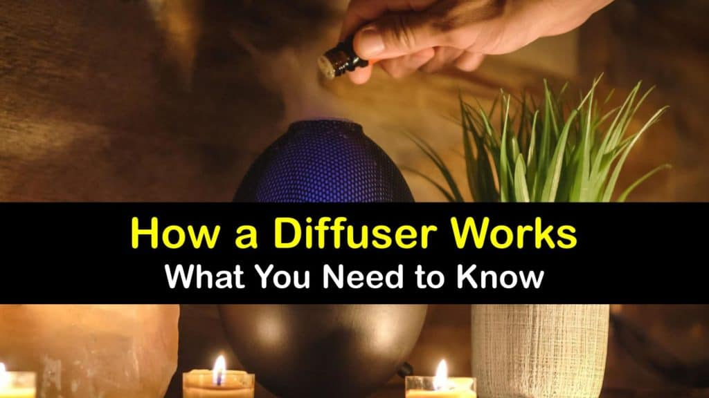 How does a Diffuser Work titleimg1