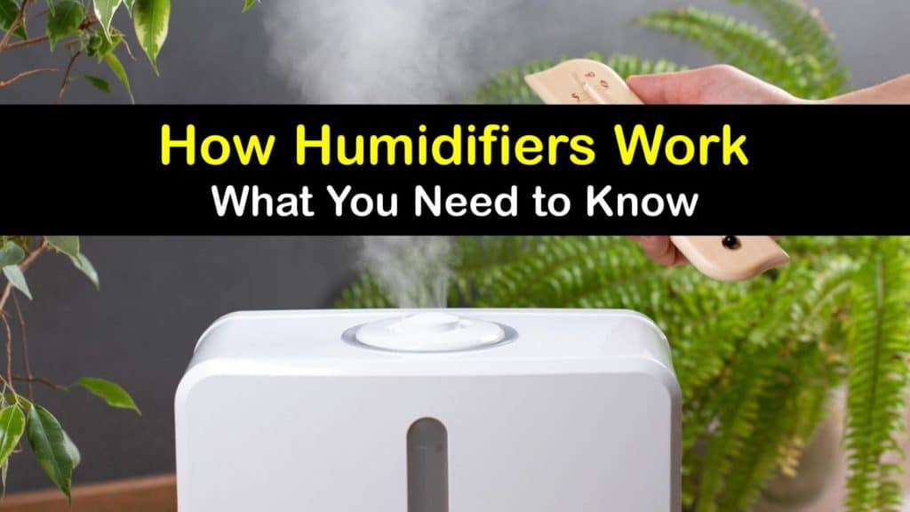 How does a Humidifier Work titleimg1