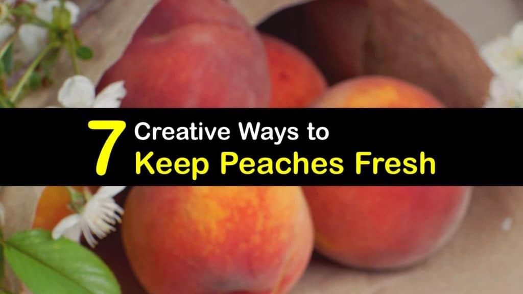 How to Keep Peaches Fresh titleimg1