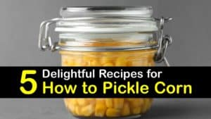 How to Pickle Corn titleimg1