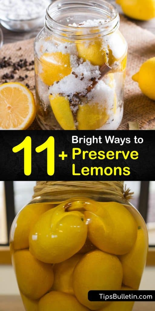 Savor that fresh lemon taste that we all love by learning about fermentation, pickling, and other preservation methods. Turn your Meyer lemons into herbed cubes with bay leaves and olive oil, or juice them into lemony salad dressings that keep well for months on end. #howto #preserve #lemons