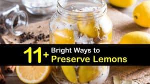 How to Preserve Lemons titleimg1