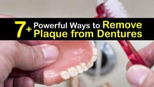 How to Remove Plaque from Dentures titleimg1