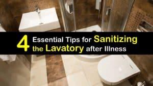 Sanitize the Lavatory titleimg1