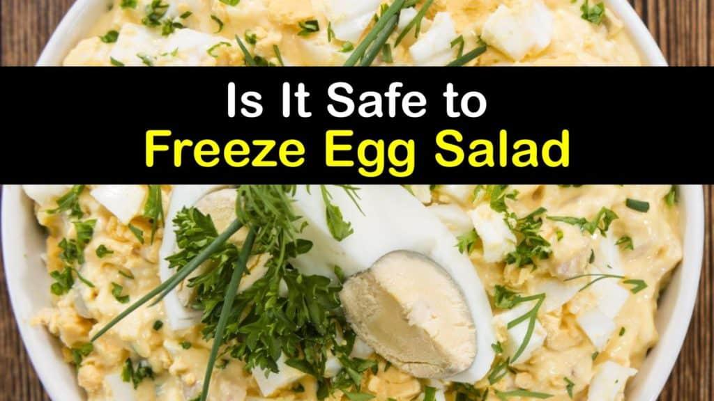 Can You Freeze Egg Salad titleimg1