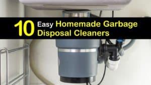 Homemade Garbage Disposal Cleaner titleimg1