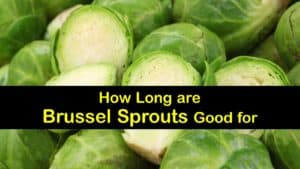 How Long are Brussels Sprouts Good for titleimg1
