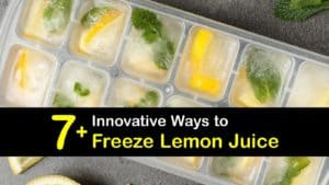 How to Freeze Lemon Juice titleimg1