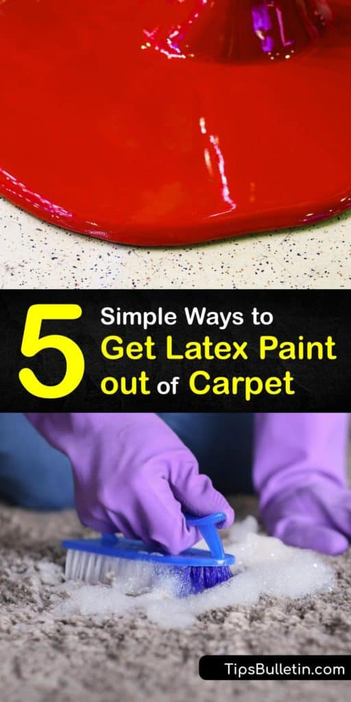 Find out how to get wet and dried latex paint out of a carpet. Remove paint stains from your carpet by blotting with paper towels or a rag dipped in acetone, saturating the stain with hot water, or making a cleaning solution from dish soap and warm water. #remove #latex #paint #carpet
