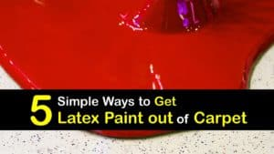 How to Get Latex Paint out of Carpet titleimg1