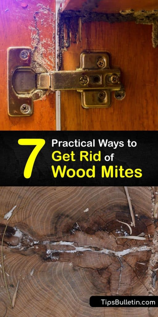Find out how to eliminate a mite infestation naturally. Wood mites are tiny white bugs like spider mites and dust mites. While wood mites are less bothersome than termites, they transport allergens around the house that cause allergic reactions in some people. #howto #getridof #wood #mites