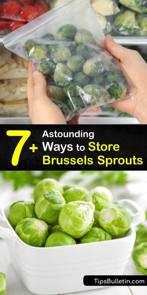 Before storing veggies like Brussels sprouts, you must blanch the sprouts with boiling water and cold water to shock them. Freeze Brussels sprouts on a baking sheet before transferring them into freezer bags or an airtight container. #howto #store #Brussels #sprouts