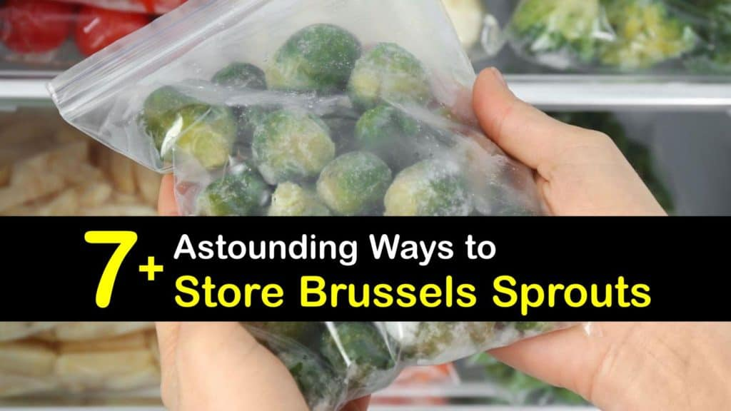 How to Store Brussels Sprouts titleimg1