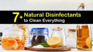 Natural Disinfectant Cleaner titleimg1