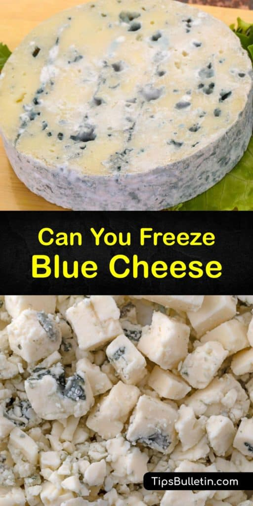Learn the difference between Brie, Camembert, and blue cheese crumbles. For the best quality blue cheese, you must know how to use plastic wrap or an airtight container to freeze the cheese. After thawing frozen blue cheese, it tastes best in cooked dishes. #howto #freeze #blue #cheese