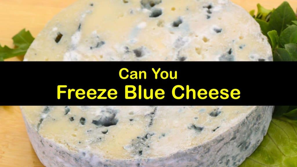 Can You Freeze Blue Cheese titleimg1