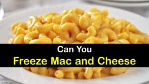 Can You Freeze Mac and Cheese titleimg1