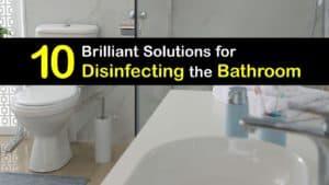 Disinfect the Bathroom titleimg1