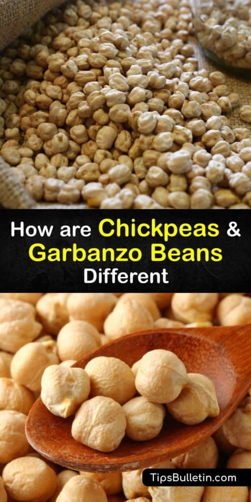 Find out why they're called chickpeas in English and garbanzo beans in Spanish, the difference between desi and Kabuli chickpeas, and what makes them a superfood. They're rich in dietary fiber, protein, folate, and many other vitamins and minerals. #chickpeas #garbanzo #beans