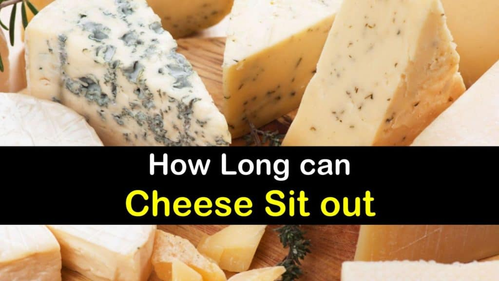 How Long can Cheese Sit out titleimg1