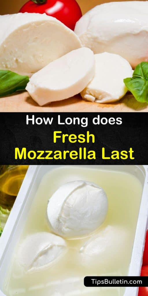 Mozzarella cheese varieties like bocconcini are made from buffalo milk instead of cow's milk. Store curds of mozzarella in an airtight container with cold water to maintain the moisture. Never keep mozzarella at room temperature for long periods or covered in plastic wrap. #howto #mozzarella #fresh
