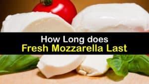 How Long does Fresh Mozzarella Last titleimg1