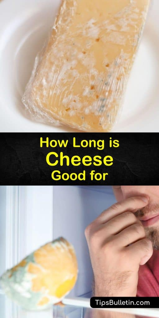 Learn the differences in shelf life between hard and soft cheeses. Soft cheese, like cream cheese, expires faster than hard cheese. For cheeses like asiago, gruyere, feta, and Gouda, wrap the cheese in a piece of parchment paper before placing it in the fridge. #cheese #fresh #storage