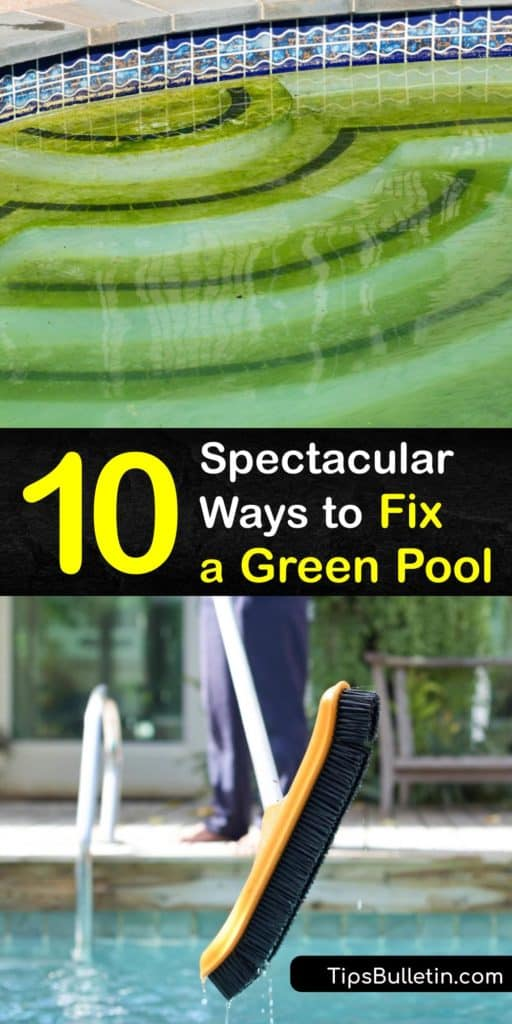 Dive into summer with this guide on cleaning algae from the bottom of the pool with liquid chlorine and algaecide. These steps teach you to backwash a sand filter, check cyanuric acid and chlorine levels, and use a skimmer to remove debris that turns the water green and murky. #clean #green #pool