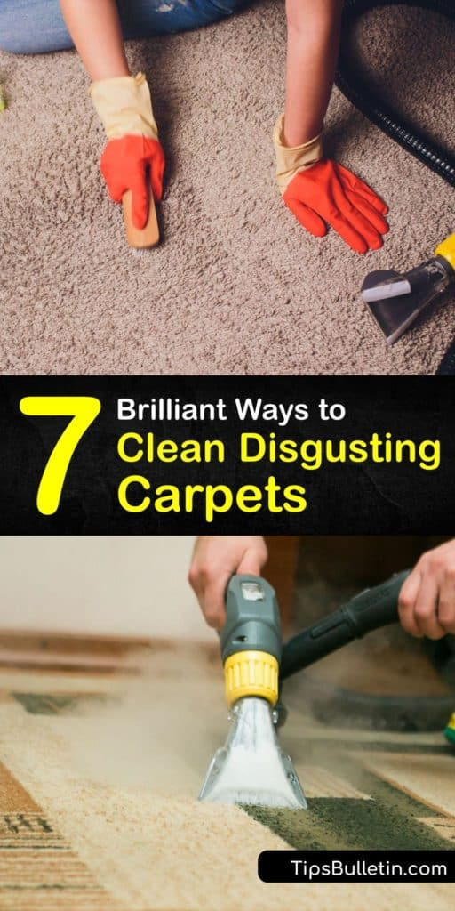 Discover how to clean filthy carpeting with a vacuum cleaner, steam cleaner, and other carpet cleaning methods. Make DIY deep cleaning solutions with white vinegar, Borax, hydrogen peroxide, and elbow grease to remove dirt from the carpet fibers. #howto #clean #filthy #carpet #disgusting