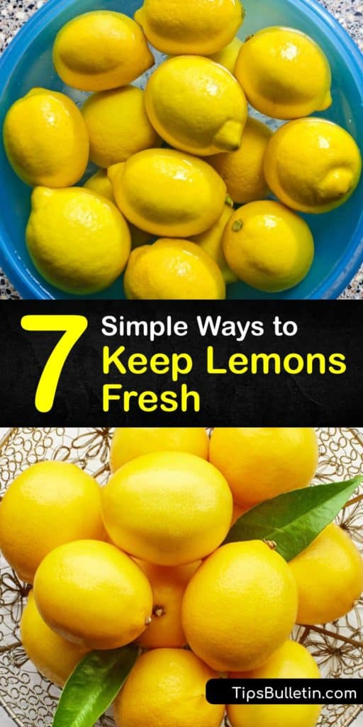 Discover how to store lemons and lemon juice for up to a whole month. When you refrigerate whole lemons instead of leaving them on the countertop, they stay fresh for three weeks. Zesting lemon rinds and lemon slices last longest in an airtight container. #howto #fresh #lemons #preserve