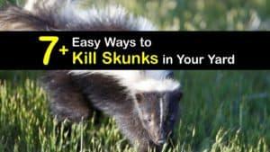 How to Kill Skunks titleimg1
