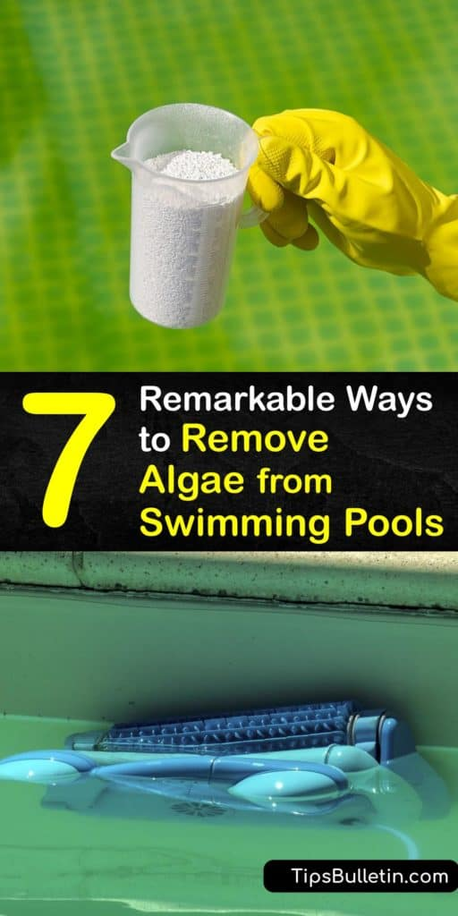 Pool owners must know how to remove green algae and mustard algae in the pool water. When you maintain proper calcium and chlorine levels, regularly backwash your water, and check your pool filter, you will have clean water. #howto #clean #algae #swimming #pool