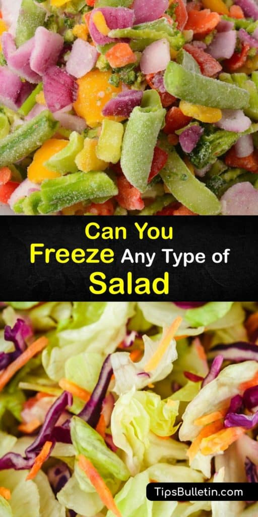 Learn which salads are suitable for freezing and the best ways to store them. Some foods have high water content and become mushy after you defrost them, while others handle the freezing process if you store them in an airtight container or freezer bag. #freeze #salad