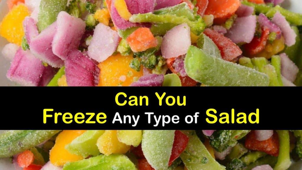 Can You Freeze Salad titleimg1