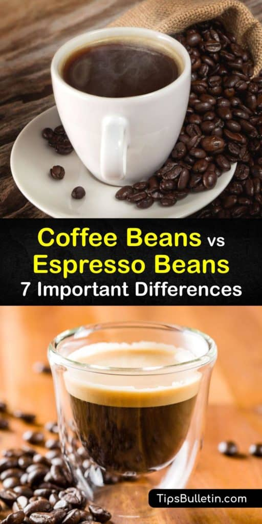 Get your mind moving after your morning French press and read this article about how espresso and coffee beans differ. Discover how brewing methods, an espresso machine, hot water, roasters, ground coffee, and Arabica beans make drip coffee and espresso different. #espresso #coffee #beans