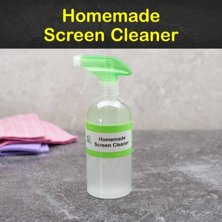 Homemade Screen Cleaner