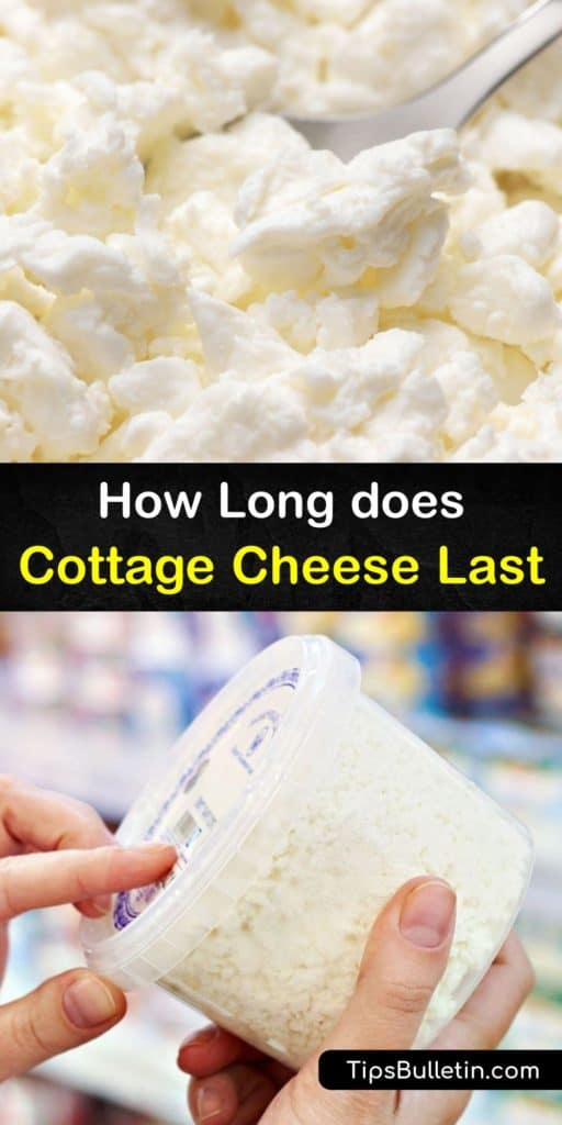 Become an expert in cheese after reading this article about how to make cottage cheese last after the expiration date with an airtight container and aluminum foil. Understand food safety and avoid food poisoning by leaving the curd out at room temperature. #cottage #cheese #last
