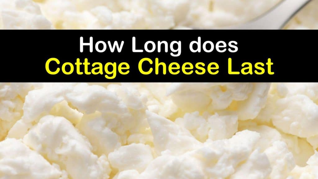 How Long does Cottage Cheese Last titleimg1